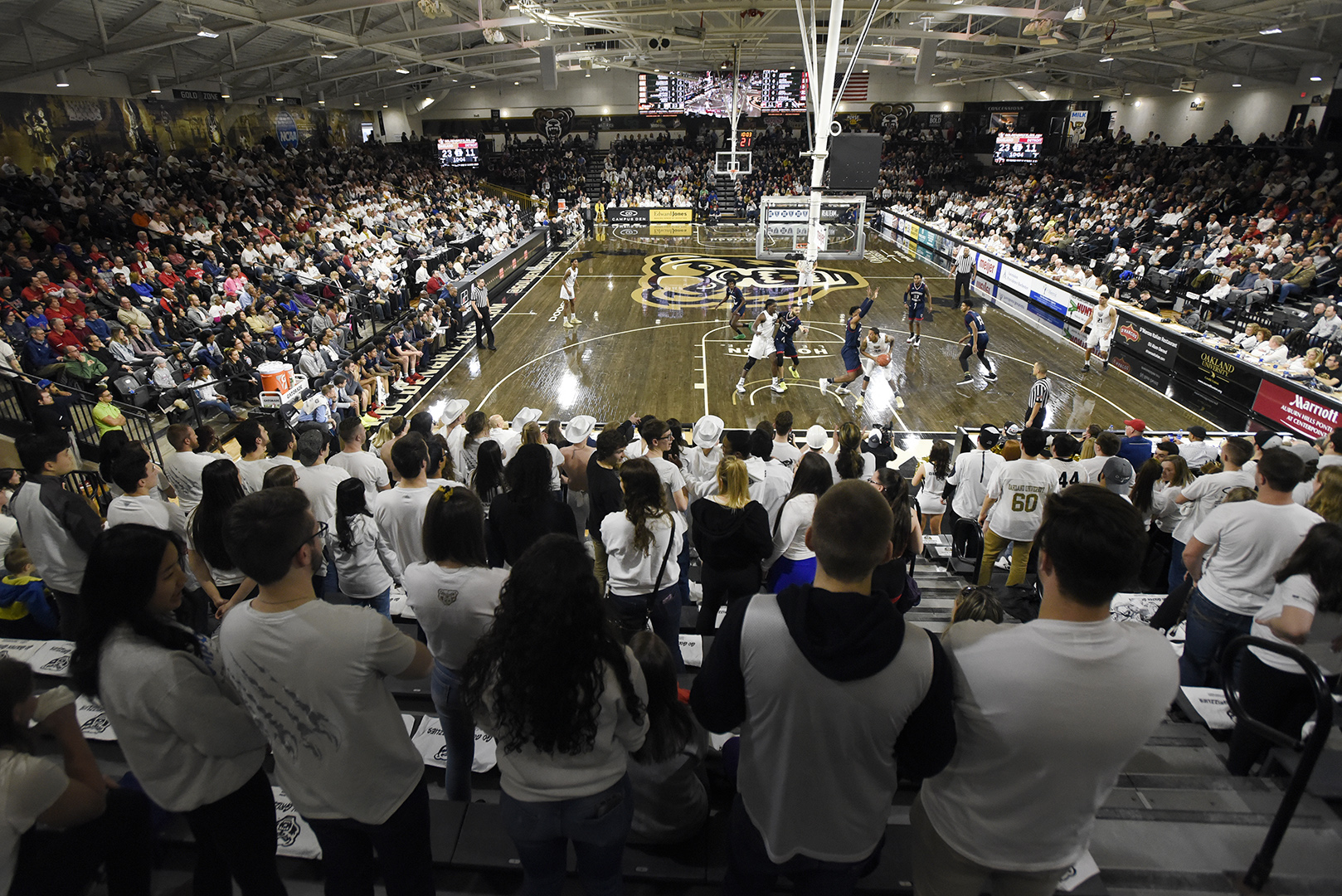 image regarding Man in the Arena Free Printable identified as Mens Basketball - Oakland School Sports activities